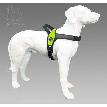 Tre Ponti  Primo Fluoro, tuig voor honden