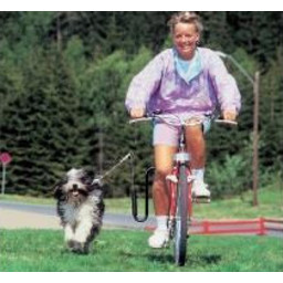Springer Springer, dé originele zwarte fietsbeugel uit Noorwegen