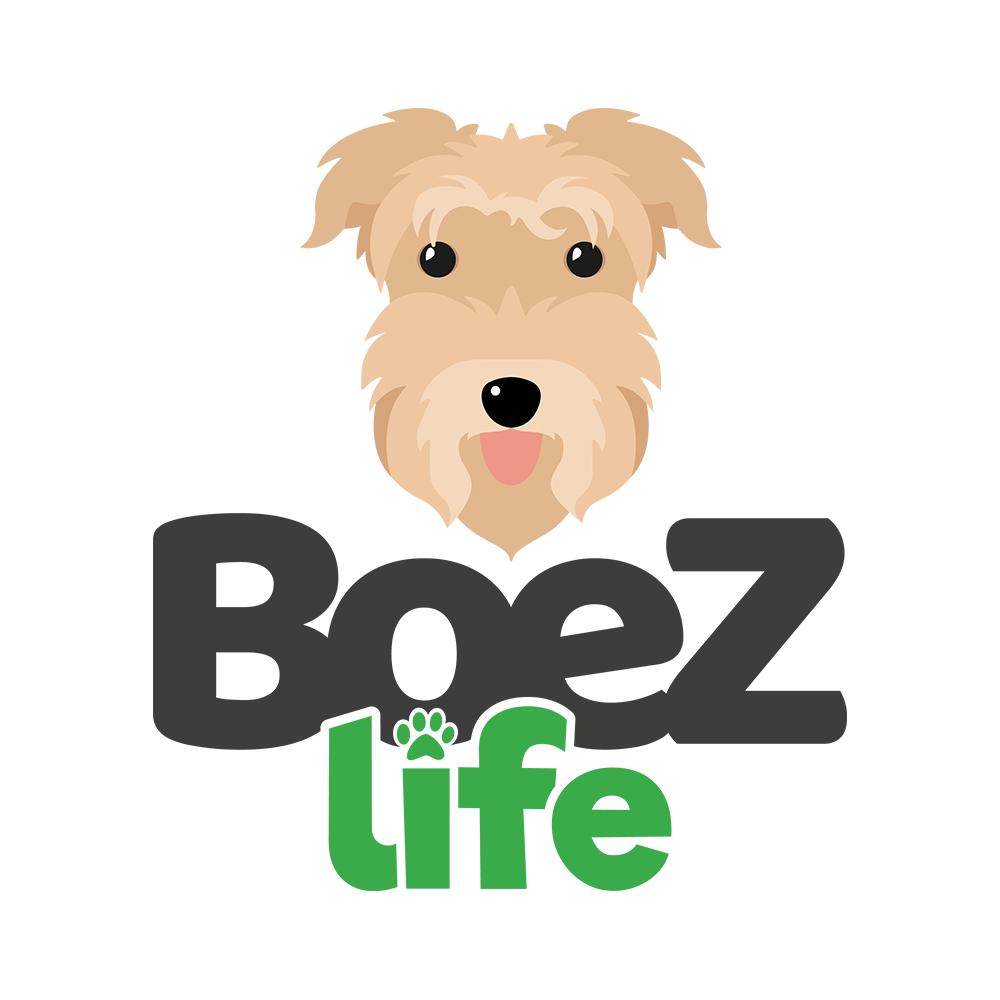 Logo BoeZLife