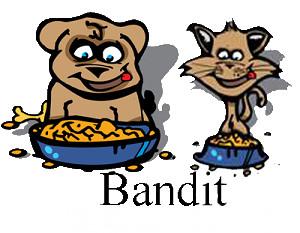 Op bezoek bij ..... Bandit! Biologische Diepvries vleesvoeding voor hond & Kat