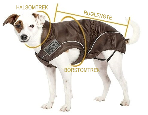 Dog Bite Honden regenjas Maatopname