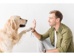 Ontworm op maat en vergeet niet om goed voor de darmflora van uw hond of kat te zorgen!