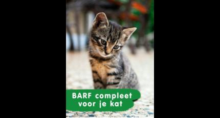 DARF, KVV voor de Kat