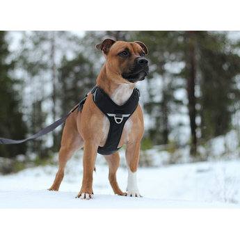 DOG Copenhagen Comfort Walk Pro Harness / Tuig