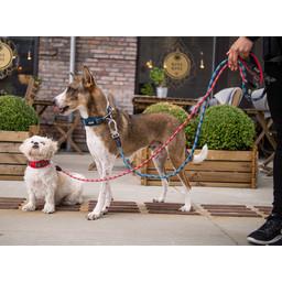 DOG Copenhagen Urban Rope Leash
