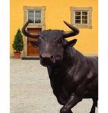 Grand Taurus – Lebensgroßer Stier Bronzefigur