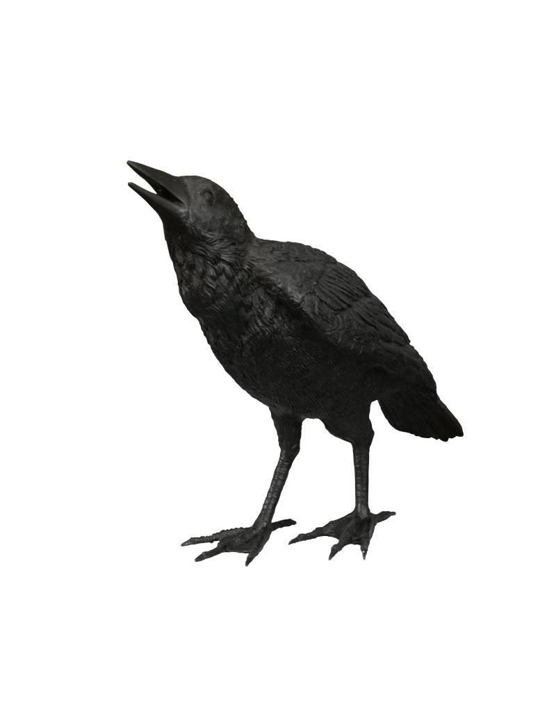 Cuervo  Cantando – Bronzeskulptur Rabe