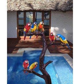 Grands Perroquets – Papageienbaum