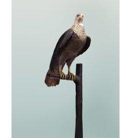 Horus – Lebensgroße Falkenskulptur
