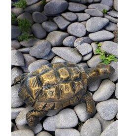 Egid – Bronzefigur einer Schildkröte