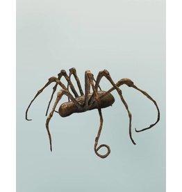 Thekla – Abstrakte Spinnenskulptur