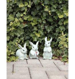 Tapsi – Niedliches Kaninchen Trio