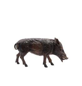 Petite Sus – Kleines Wildschwein