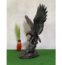 Aquila – Bronzeadler mit Fisch