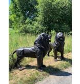 Ostiarius – Große Löwen Bronzefiguren