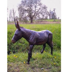 Asinus – Große Bronze eines jungen Esels