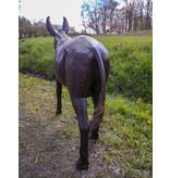 Asinus – Große Bronzefigur junger Esel