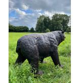 Ben – Großer Bronzebär