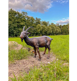 Capra – Lebensgroße Ziege Bronzefigur