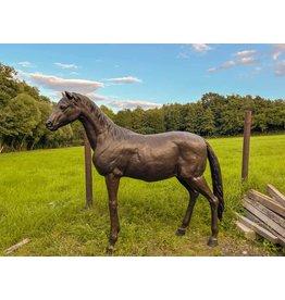 Eclipse – Lebensgroßes Pferd