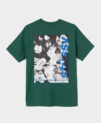 Stussy Stussy Windflower Tee Dark Green