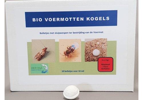 Refona Sluipwespen tegen alle soorten motten | bio voermotkogels