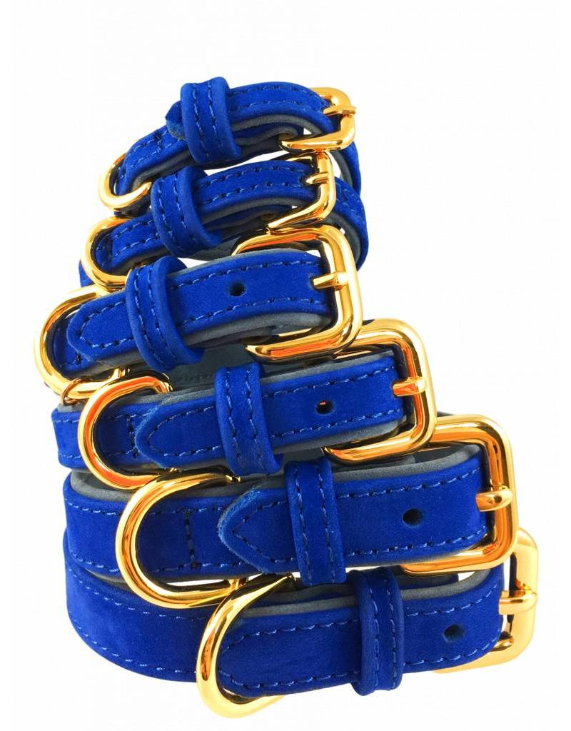 SIMPLY SMALL Leather dog collar - royal blue - SIMPLY SMALL