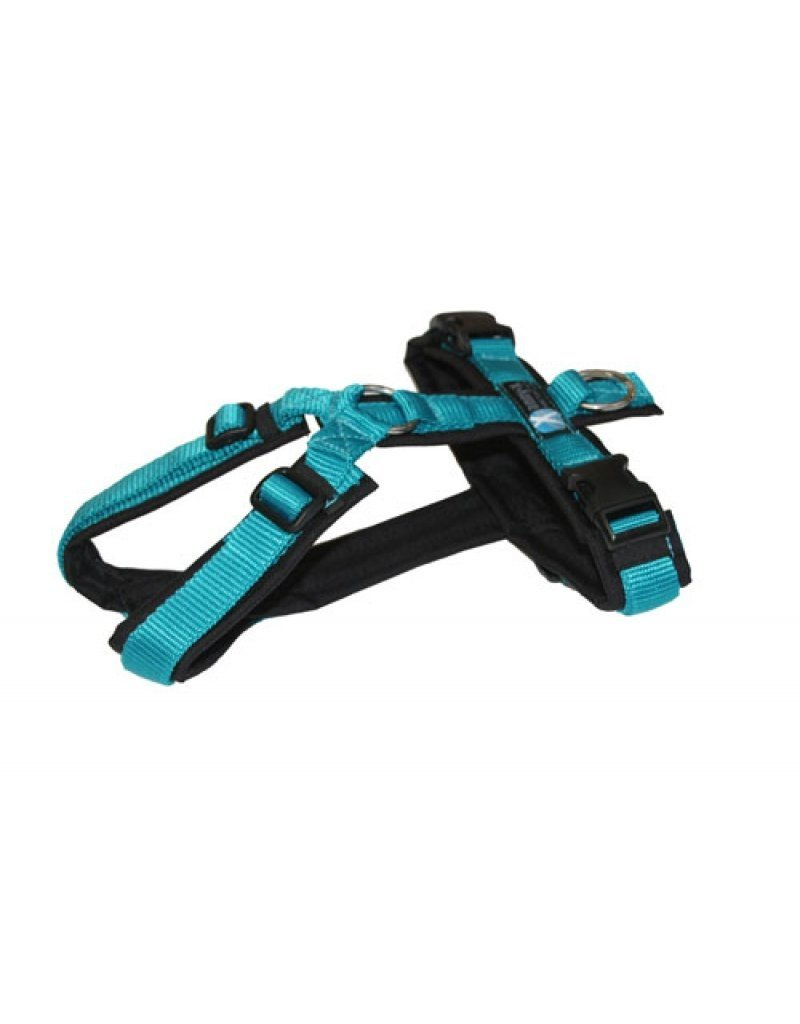 Anny X AnnyX harness for small dogs, XS, black/petrol