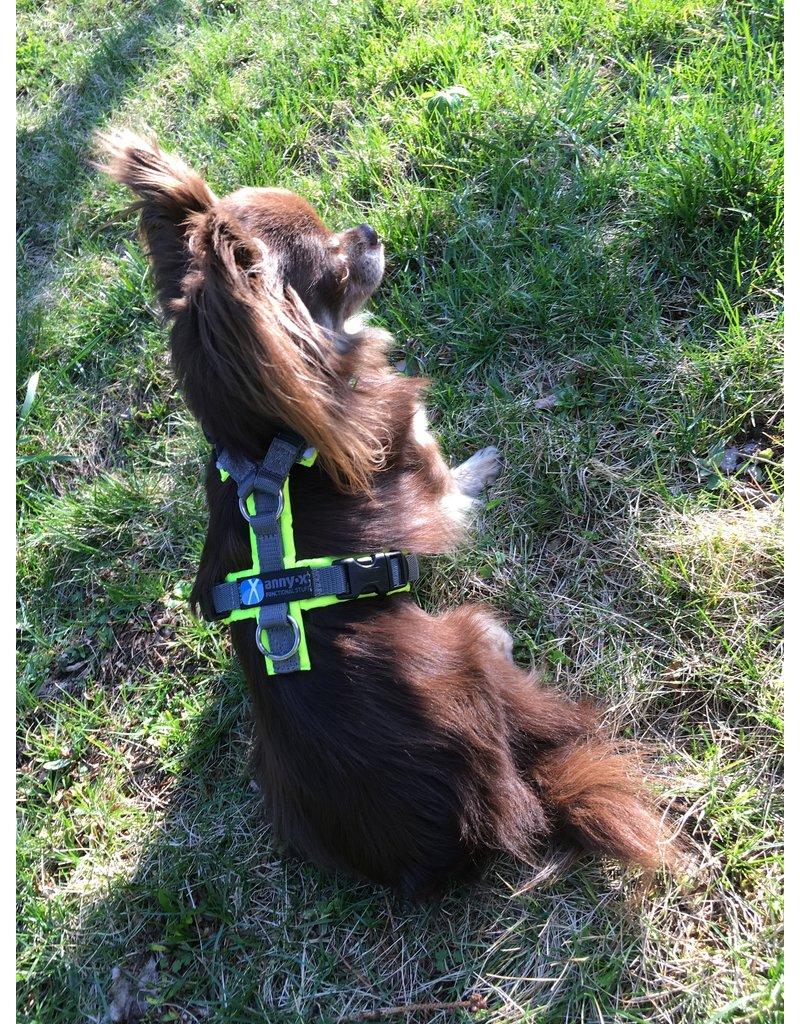 Anny X AnnyX Brustgeschirr Protect für kleine Hunde, XXS, leuchtgelb/grau