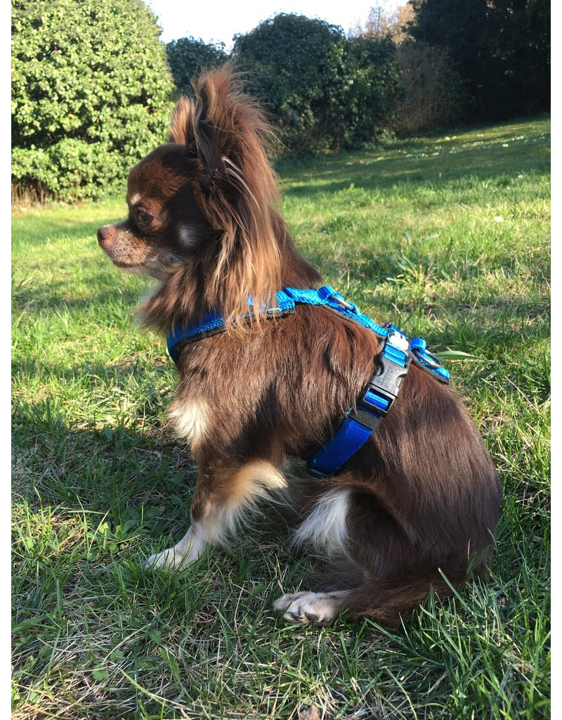Anny X AnnyX harness for small dogs, XXS, black/blue