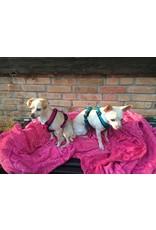 Anny X AnnyX Brustgeschirr Fun für kleine Hunde, XS, schwarz/pink