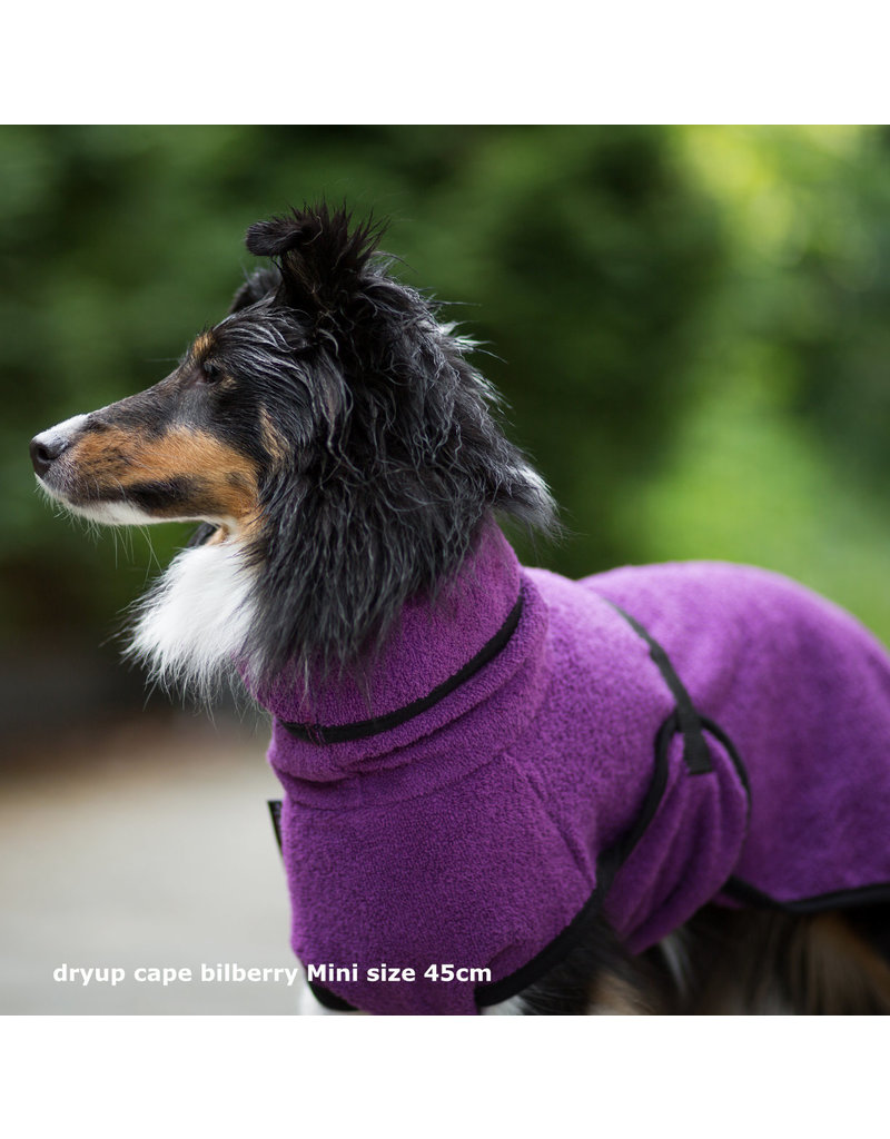 DRYUP Cape BILBERRY mini - drying cape for dogs