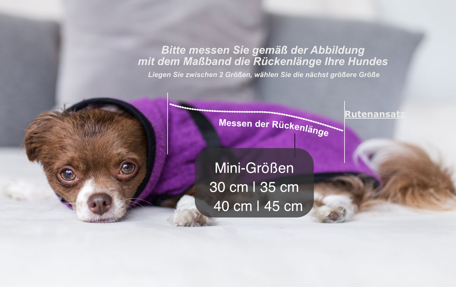Hundebademantel Grössen