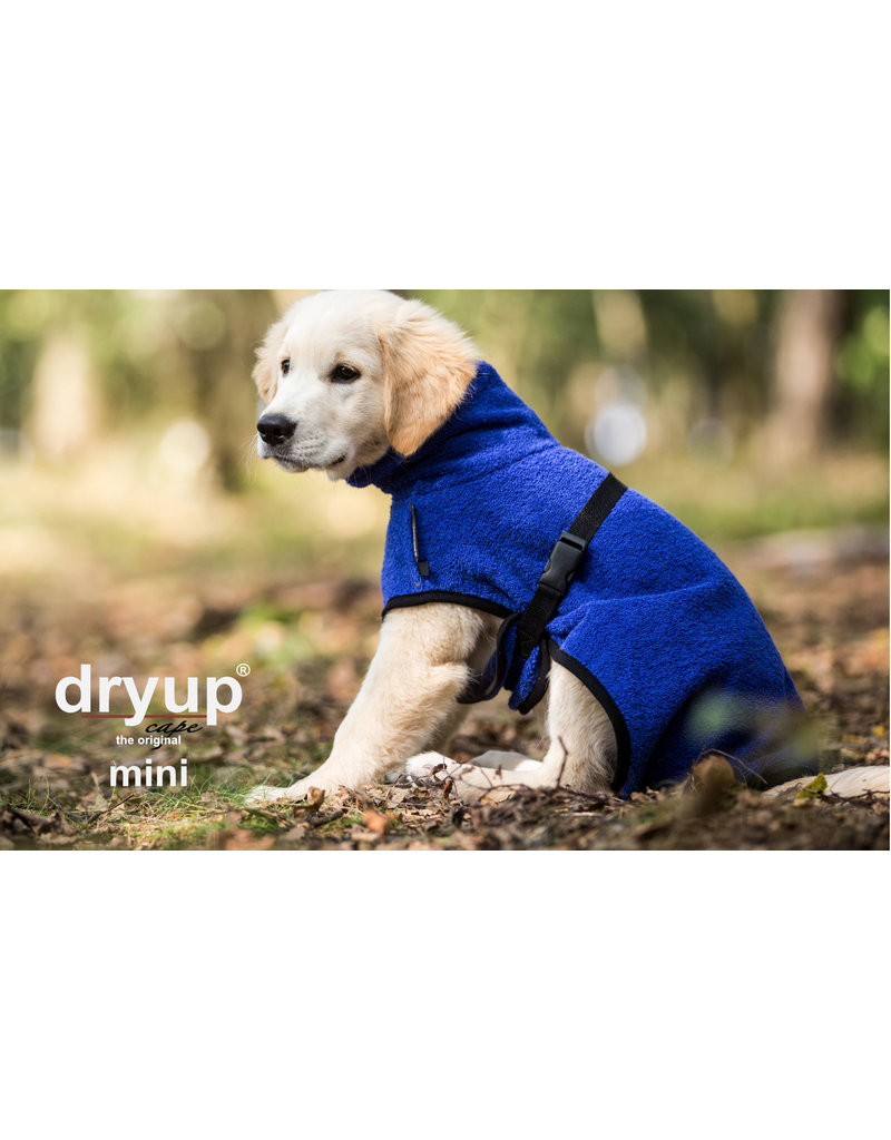 DRYUP Cape mini - drying cape for small dogs  - blueberry blue