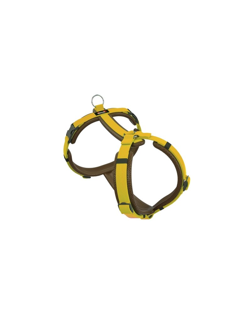 Dogfellow harness for small dogs - brown/yellow
