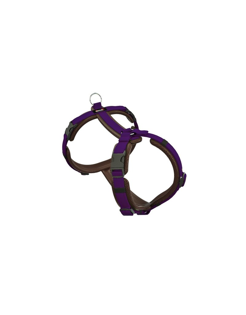 "Dogfellow ""Easy"" harness for small dogs - brown/purple"