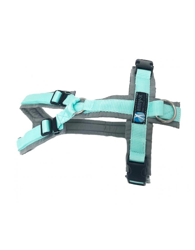 Anny X AnnyX harness for small dogs, 2XS special colour grey/mint