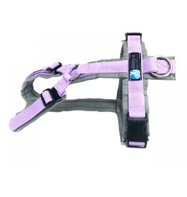 Anny X AnnyX harness for small dogs - special colour grey/lilac