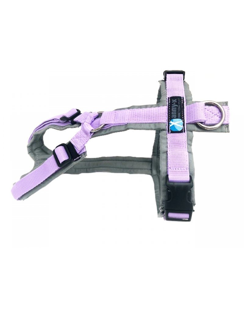 Anny X AnnyX harness for small dogs, 2XS special colour grey/lilac
