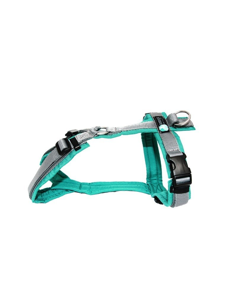Anny X AnnyX harness for small dogs, 2XS-XS special colour teal/grey