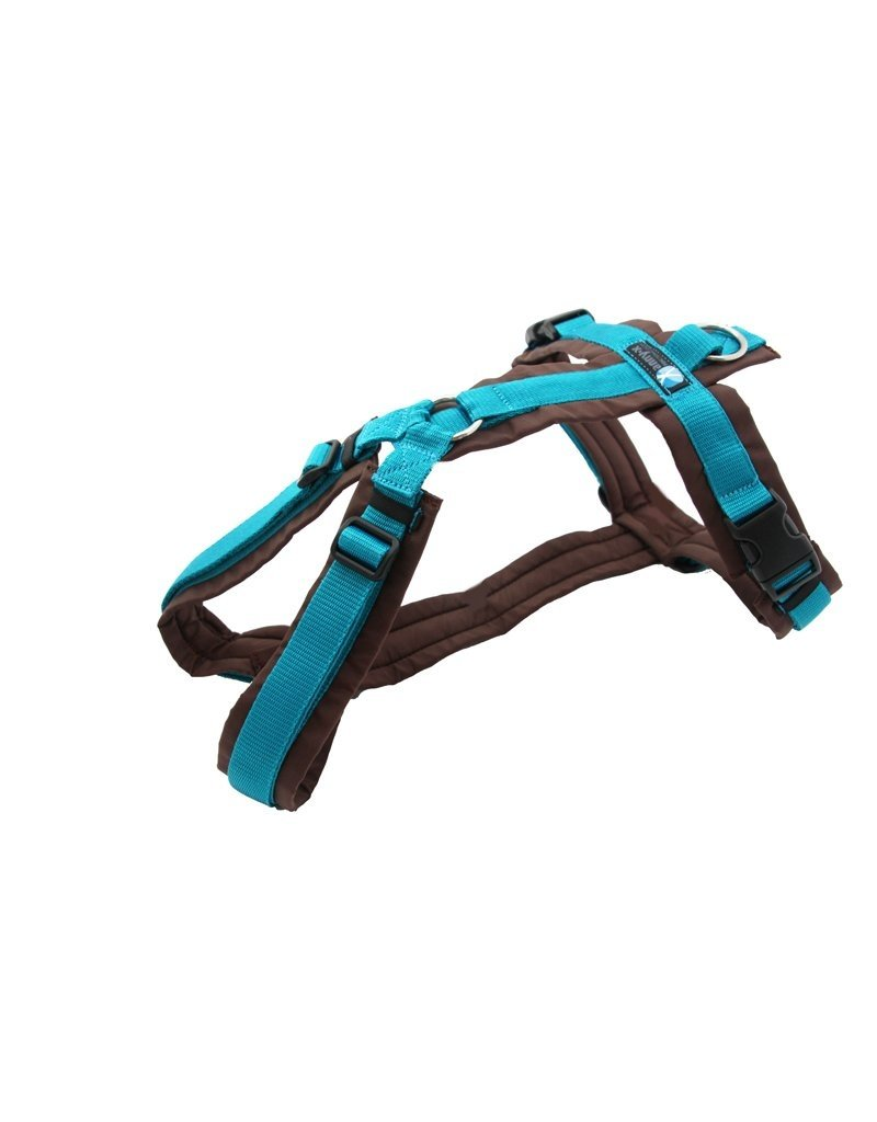 Anny X AnnyX harness for small dogs, XS special colour brown/teal