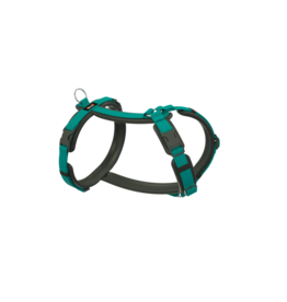 Dogfellow dog harness - black/teal