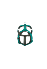 """Dogfellow harness """"easy"""" for small dogs - black/teal"""