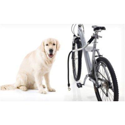 Voor de fiets/ Buggy's