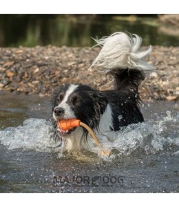 Major Dog floating Eddy, klein