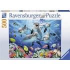 Ravensburger Ravensburger - Puzzel - Dolfijnen - 500st.
