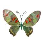 Bladwijzer Bladwijzer - Vleugels - Vlinder