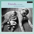 MILK MILK - Kaart - Friends are the family...