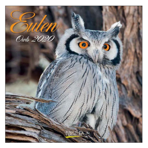 Comello Comello - Maandkalender - Owls - 2020 - 30x30