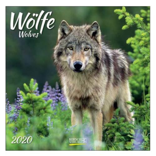 Comello Comello - Maandkalender - Wolves - 2020 - 30x30